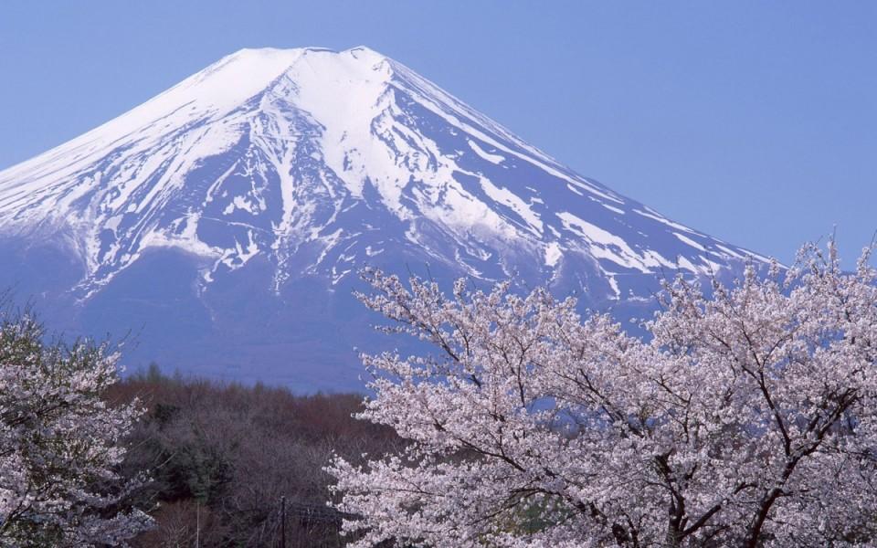 วีซ่าญีปุ่น