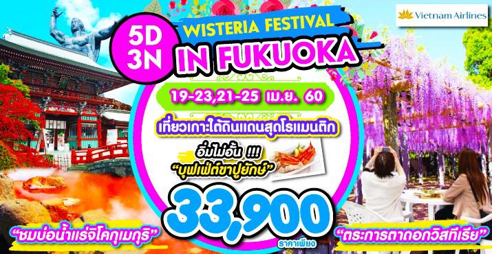 WISTERIA FESTIVAL IN FUKUOKA