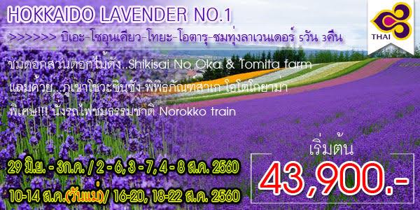 HOKKAIDO LAVENDER NO.1