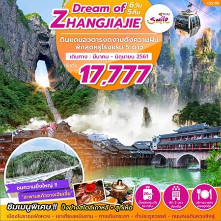 DREAM OF ZHANG JIAJIE