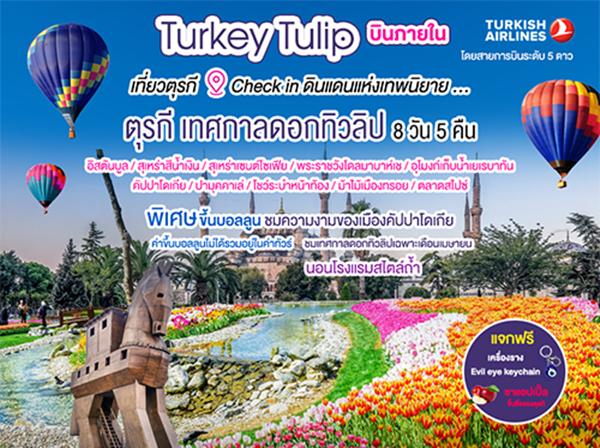 Turkey Tulip