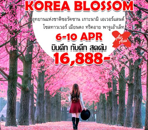 KOREA BLOSSOM