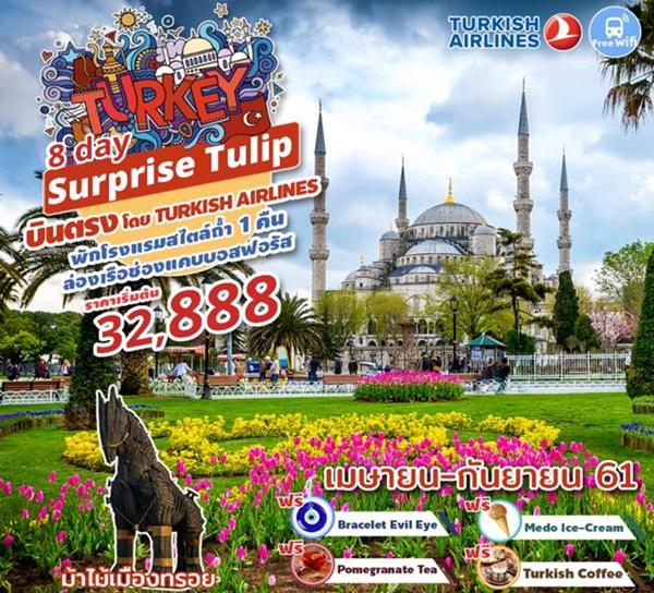 Surprise Tulip Turkey