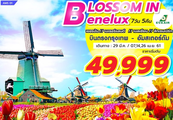 BLOSSOM IN BENELUX