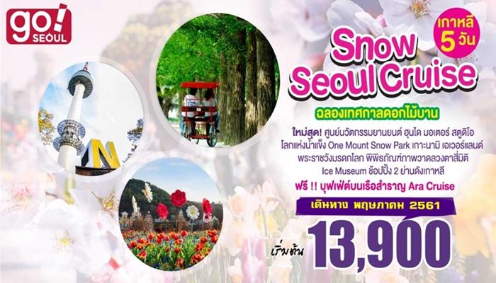 Snow Seoul Cruise