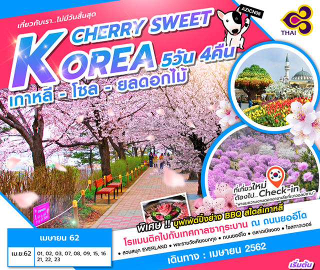 เกาหลีใต้ โซล ชมดอกไม้