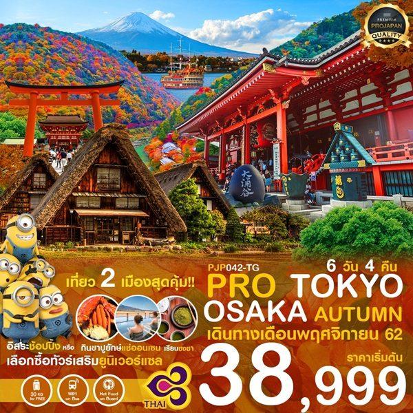 โตเกียว โอซาก้า ใบไม้เปลี่ยนสี